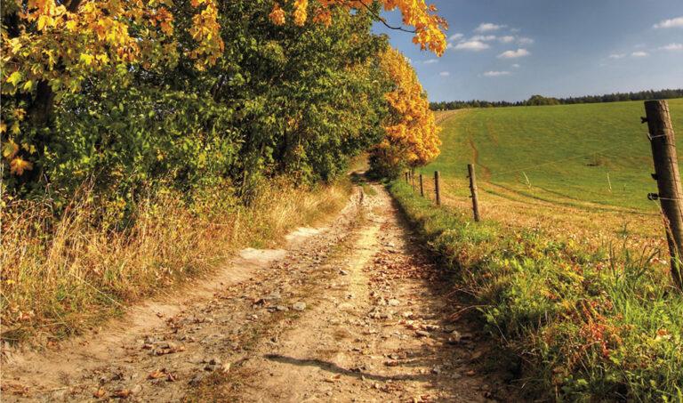 Mobilité douce. Chemins ruraux : le bon sens interdit !