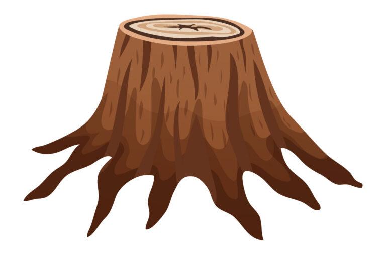 Comment détruire une souche d'arbre